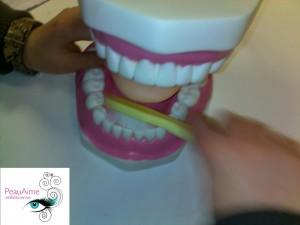 atelier socio-esthétique : brossage des dents